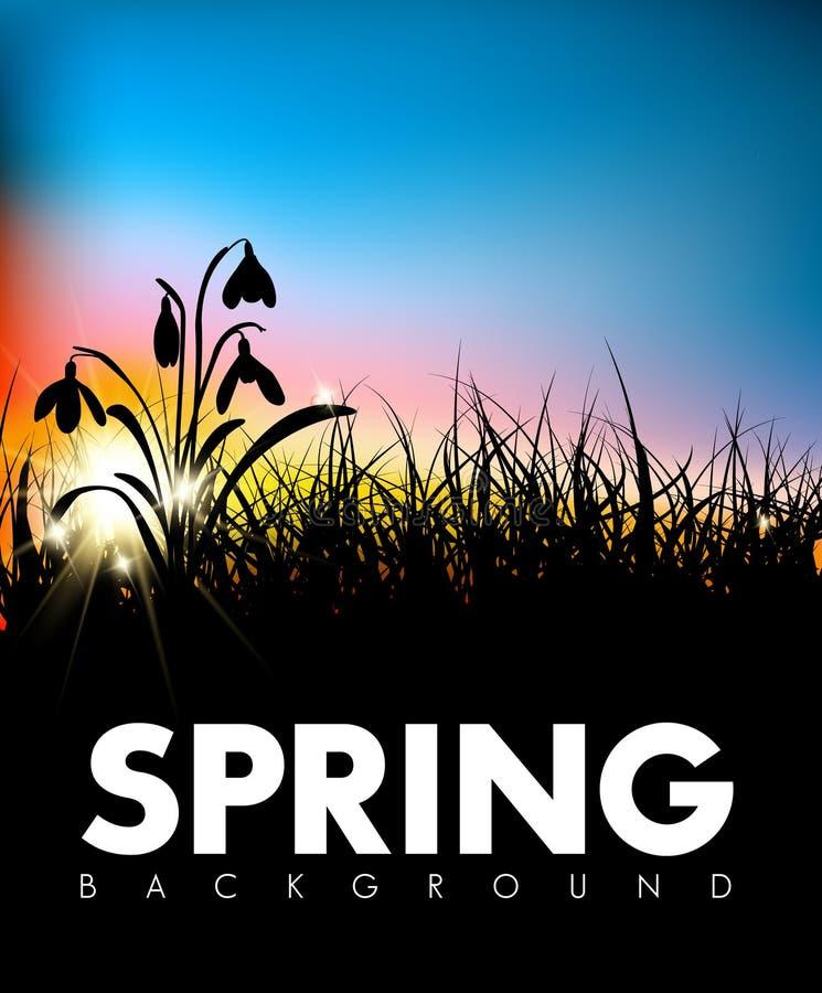 Fondo di alba dell'erba di vettore della primavera illustrazione vettoriale