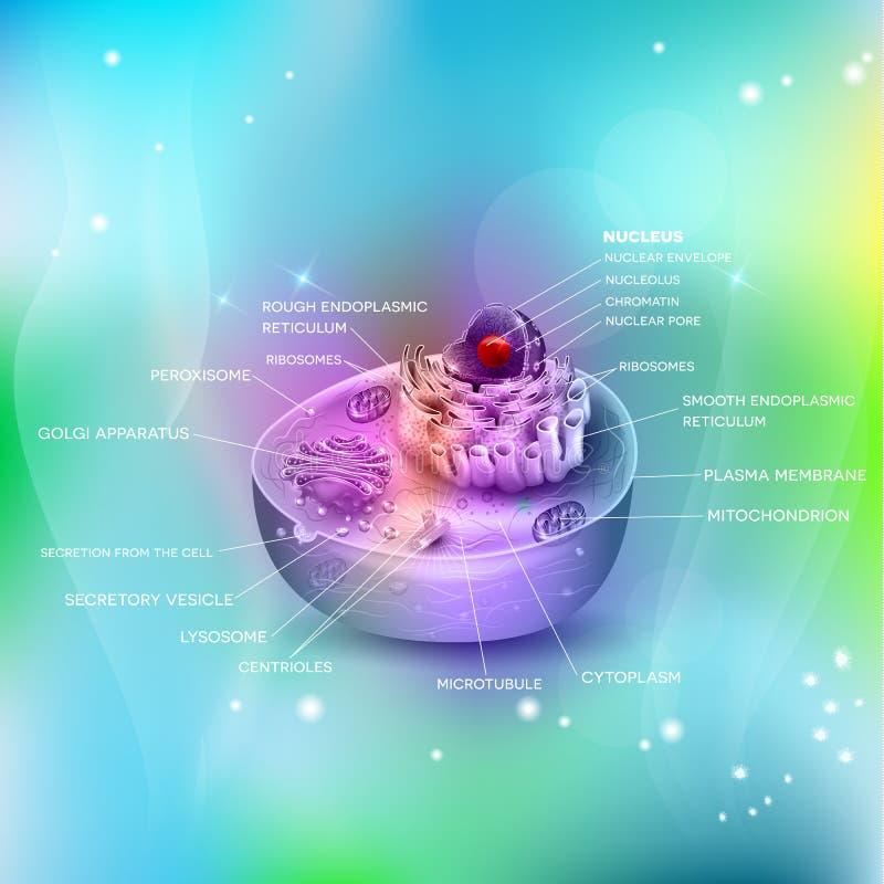 Fondo di anatomia delle cellule bello illustrazione di stock
