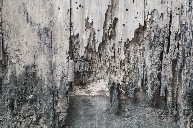 Fondo di arte nel Vietnam immagine stock libera da diritti