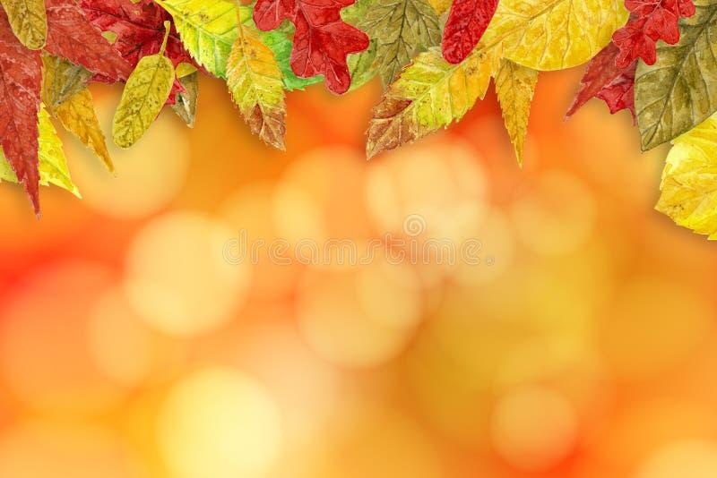 Fondo di autunno dell'acquerello fotografia stock libera da diritti