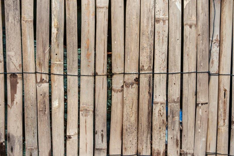 Fondo di bambù di legno del recinto fotografia stock libera da diritti