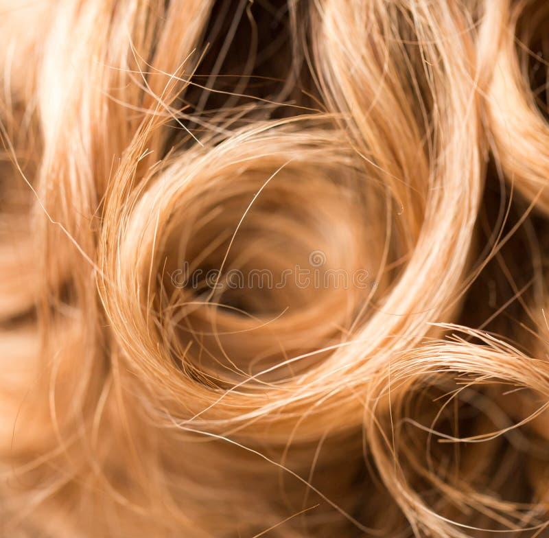 Fondo di bei capelli del ` s della donna fotografia stock