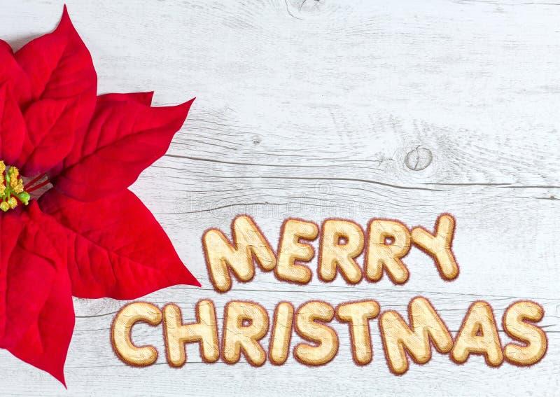 Fondo di Buon Natale immagine stock