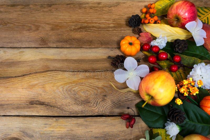 Fondo di caduta con le mele, bacche, fiori bianchi, spazio della copia immagini stock libere da diritti