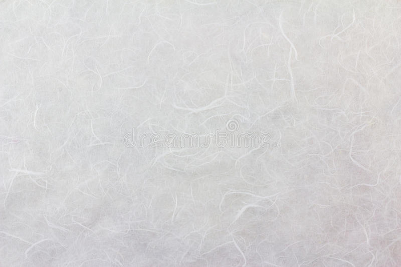 Fondo di carta di struttura del gelso immagini stock