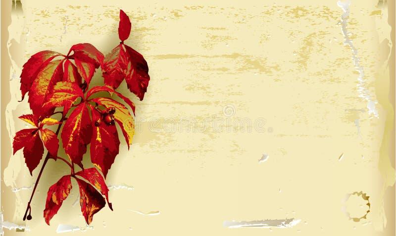 Fondo di carta graffiato annata con le foglie di autunno illustrazione vettoriale