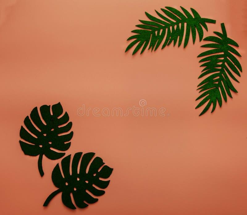 Fondo di corallo di estate di tendenza con le foglie di palma Un colore di 2019 Concetto di Flatlay immagini stock