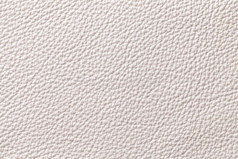 Fondo di cuoio beige bianco di struttura con il modello, primo piano immagine stock libera da diritti