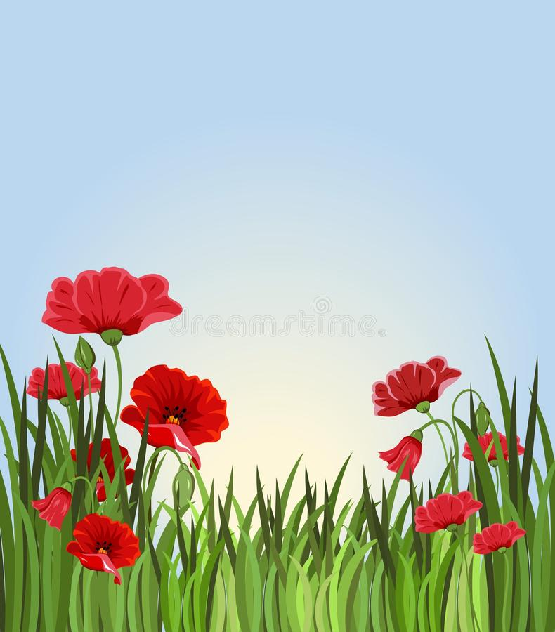 Fondo di estate con erba ed i fiori rossi illustrazione di stock