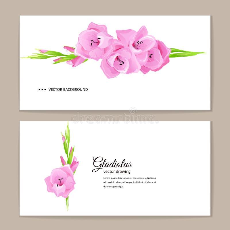 Fondo di estate con il gladiolo rosa illustrazione di stock