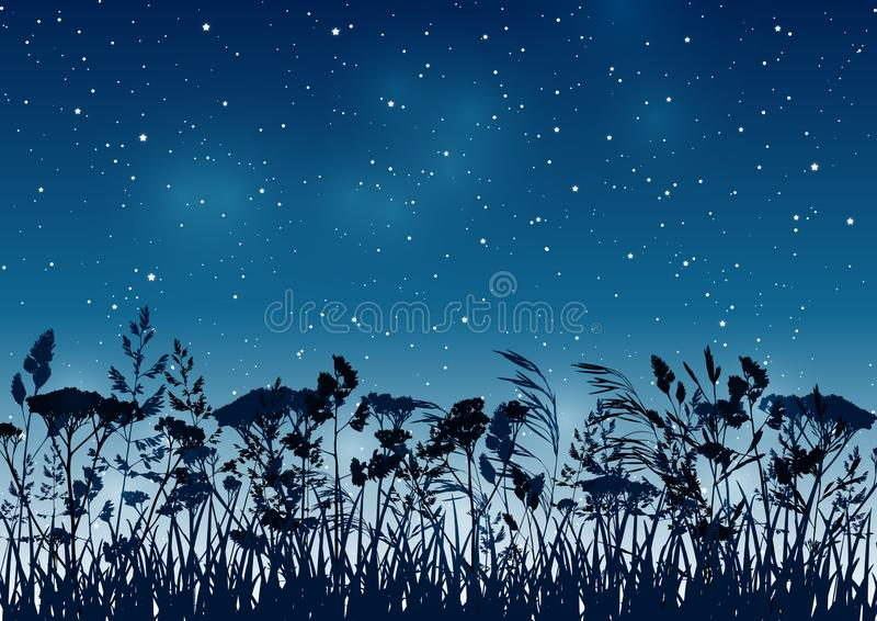 Fondo di estate con le siluette delle palme sul cielo stellato di notte illustrazione vettoriale