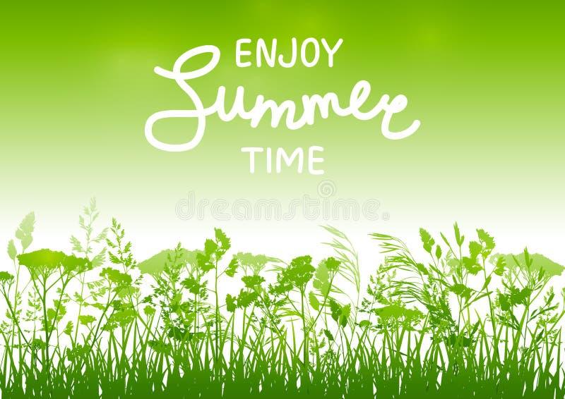 Fondo di estate con le siluette di erbe su verde royalty illustrazione gratis