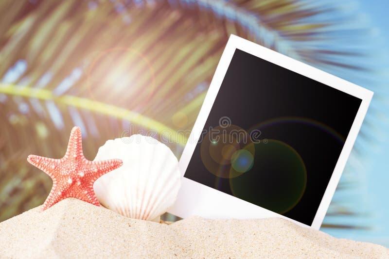 Fondo di estate fotografie stock libere da diritti