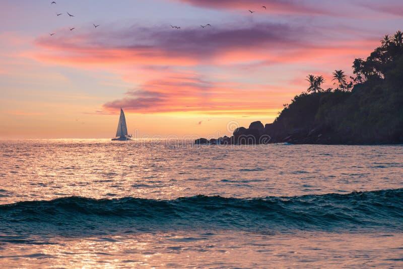 Fondo di feste di vacanza - bella vista sul mare di estate, cielo rosa al tramonto, mare caldo, barca a vela sull'orizzonte, palm immagini stock libere da diritti
