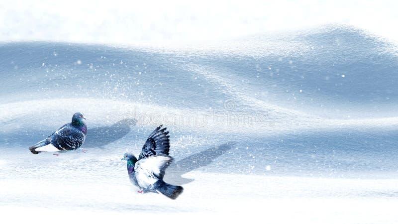 Fondo di fiaba di Natale con neve ed i piccioni bianchi puri snowfall Il paese delle meraviglie di inverno Formato largo immagine stock libera da diritti