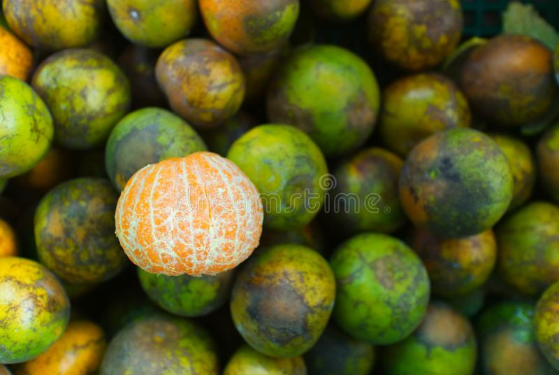Fondo di intero mandarino o frutta verde maturo fresco delle arance Concetto dell'alimento fotografia stock libera da diritti