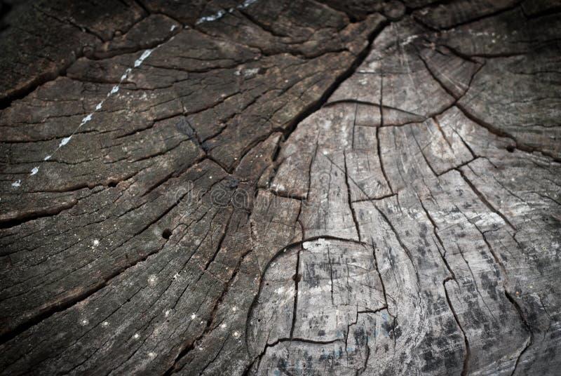 Download Fondo di legno immagine stock. Immagine di estratto, bordo - 56876981