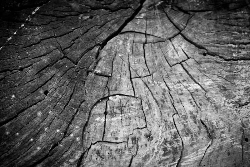 Download Fondo di legno fotografia stock. Immagine di grunge, naughty - 56892680