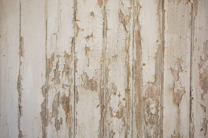 Fondo di legno bianco/grigio di struttura con i modelli naturali fotografie stock libere da diritti