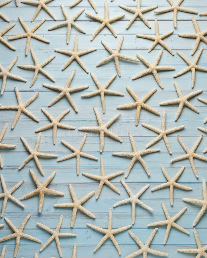 Fondo di legno blu delle stelle marine fotografie stock libere da diritti