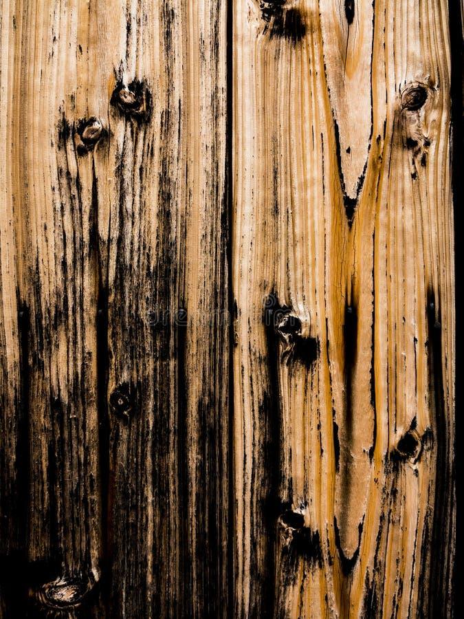 Fondo di legno bruciato di struttura fotografia stock libera da diritti
