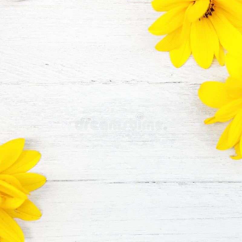 Fondo di legno con i fiori gialli immagini stock