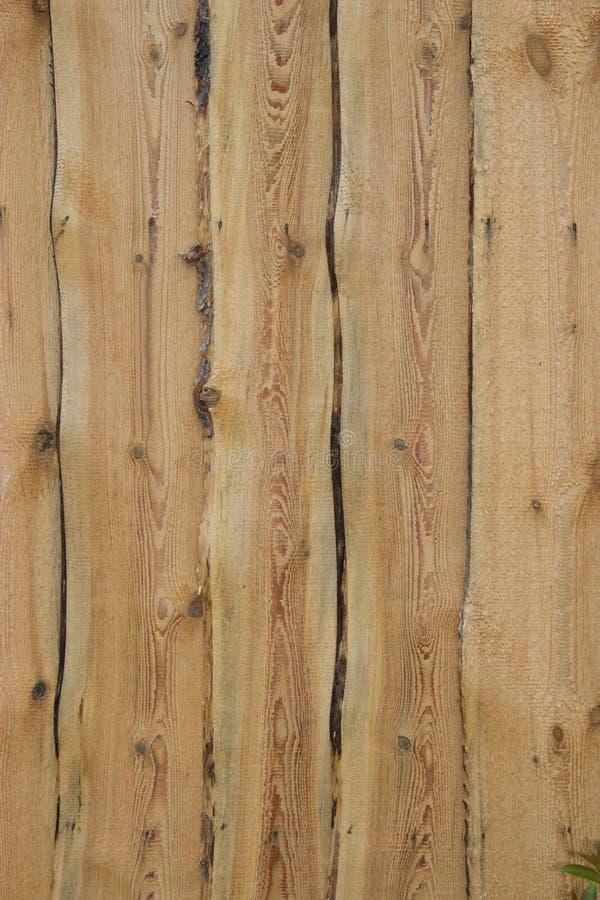 Fondo di legno con i modelli naturali fotografia stock libera da diritti