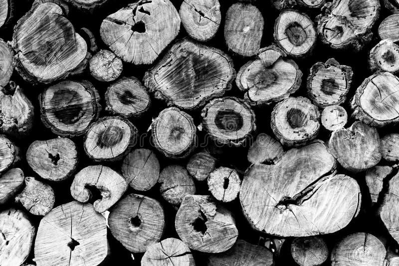 Fondo di legno del ceppo del tek rotondo immagini stock libere da diritti