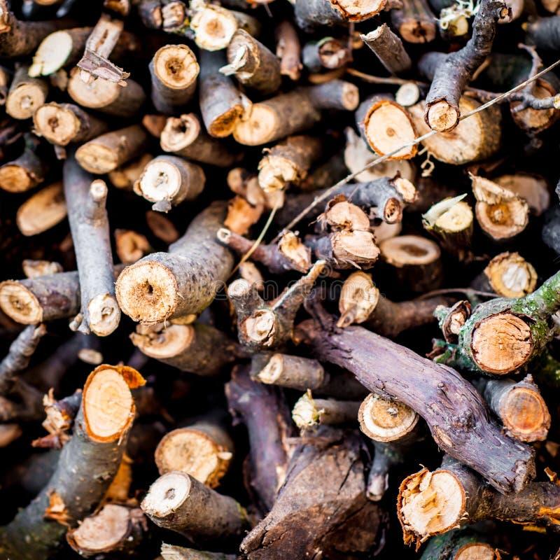 Fondo di legno del fuoco Bastoni di legno fotografia stock libera da diritti