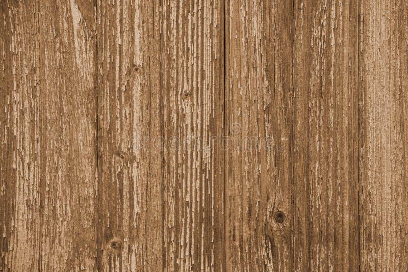 Fondo di legno della plancia, colore marrone chiaro caldo, bordi verticali, struttura di legno, vecchia tavola & x28; pavimento,  fotografie stock libere da diritti