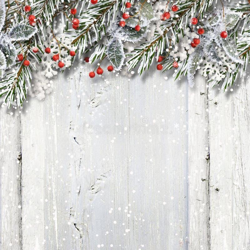 Fondo di legno di Natale con i rami e l'agrifoglio dell'abete immagini stock libere da diritti