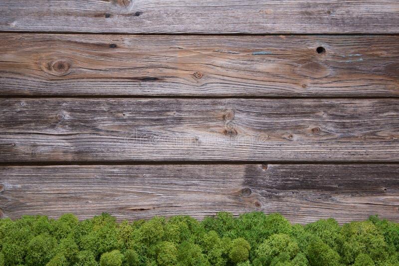 Fondo di legno di natale con muschio per una vecchia struttura rustica fotografie stock libere da diritti