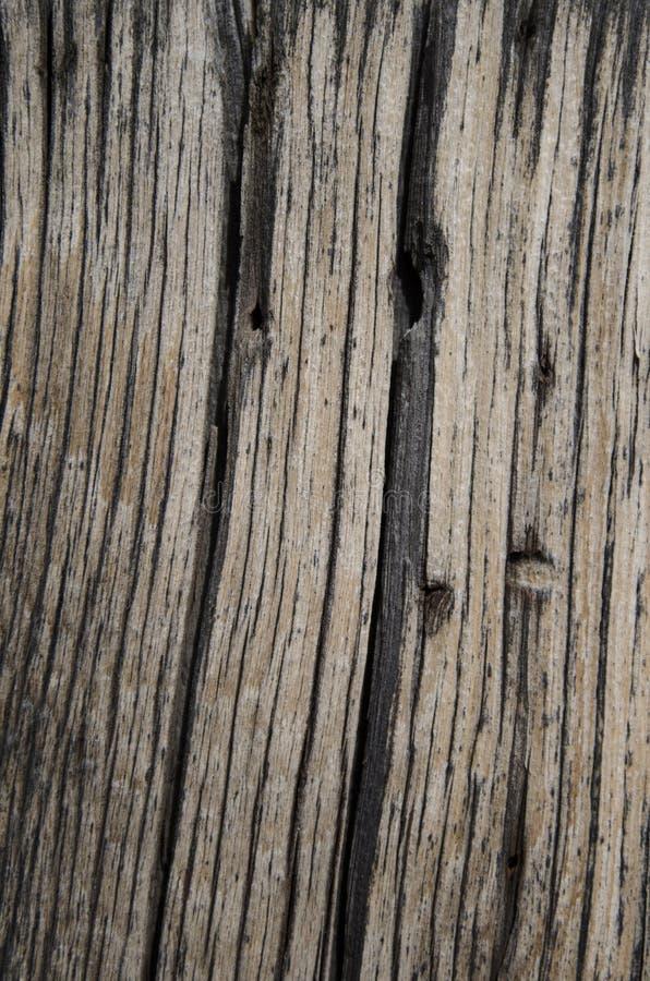 Fondo di legno di struttura del vecchio granaio fotografie stock libere da diritti