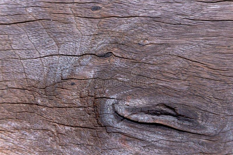 Fondo di legno genuino di struttura del bordo Foto più vicino a vedere un chiaro modello di legno immagini stock libere da diritti