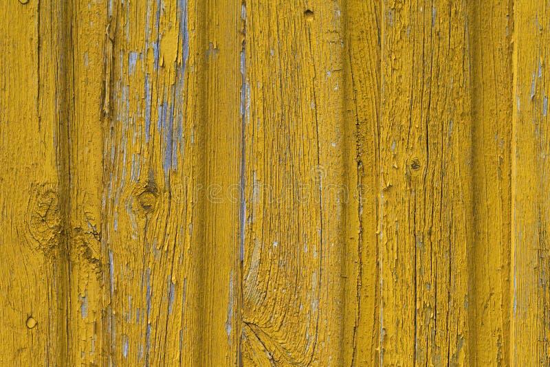 Fondo di legno giallo della parete immagine stock