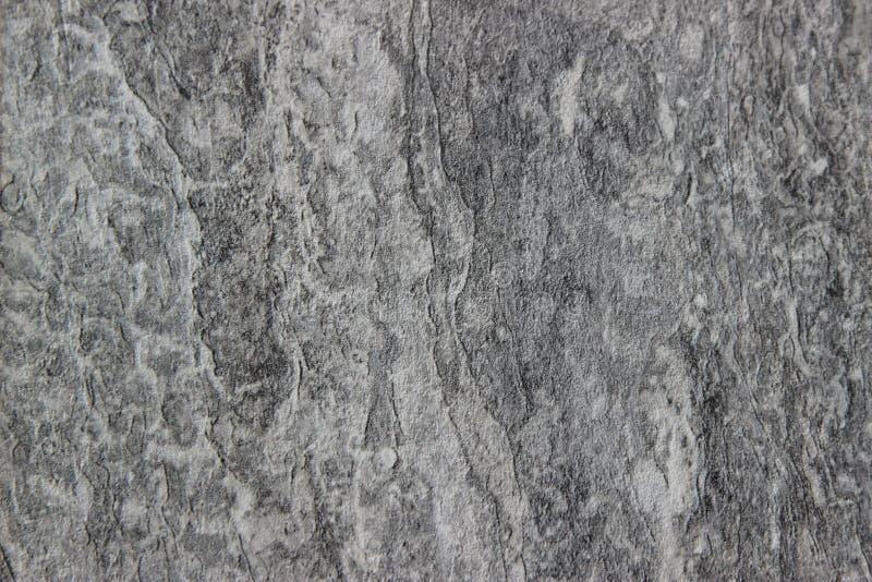 Fondo di legno grigio di struttura fotografia stock