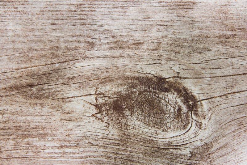Fondo di legno di struttura del grano di seppia fotografie stock libere da diritti