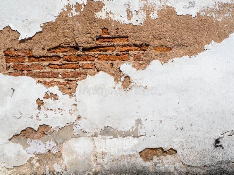 Fondo di lerciume, parete luminosa del gesso di struttura rossa del muro di mattoni, fondo per il vostro concetto o progetto fotografia stock