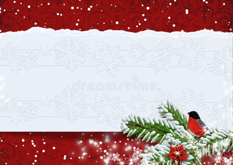 Fondo di Natale con i ciuffolotti. Copi lo spazio disponibile. royalty illustrazione gratis