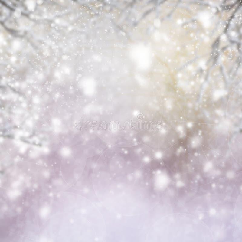 Fondo di Natale con l'albero di abete e brillare immagine stock libera da diritti