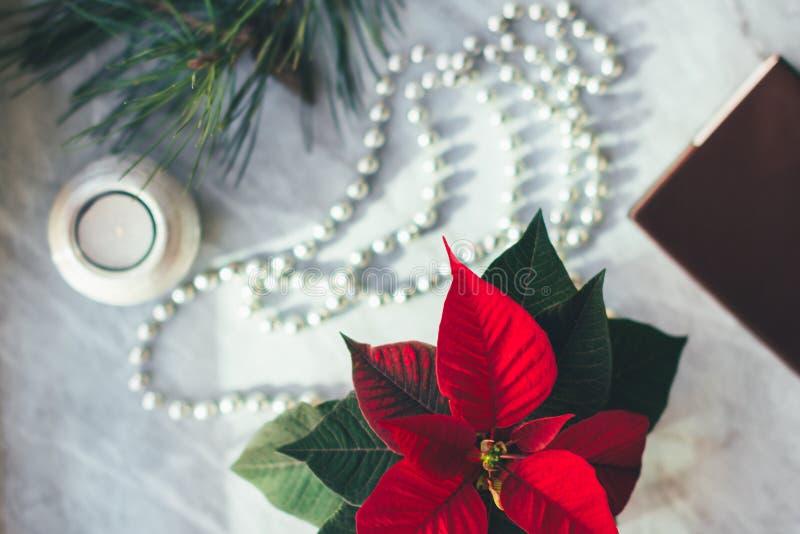 Fondo di Natale del primo piano con la stella di Natale Nuovo anno felice immagine stock libera da diritti