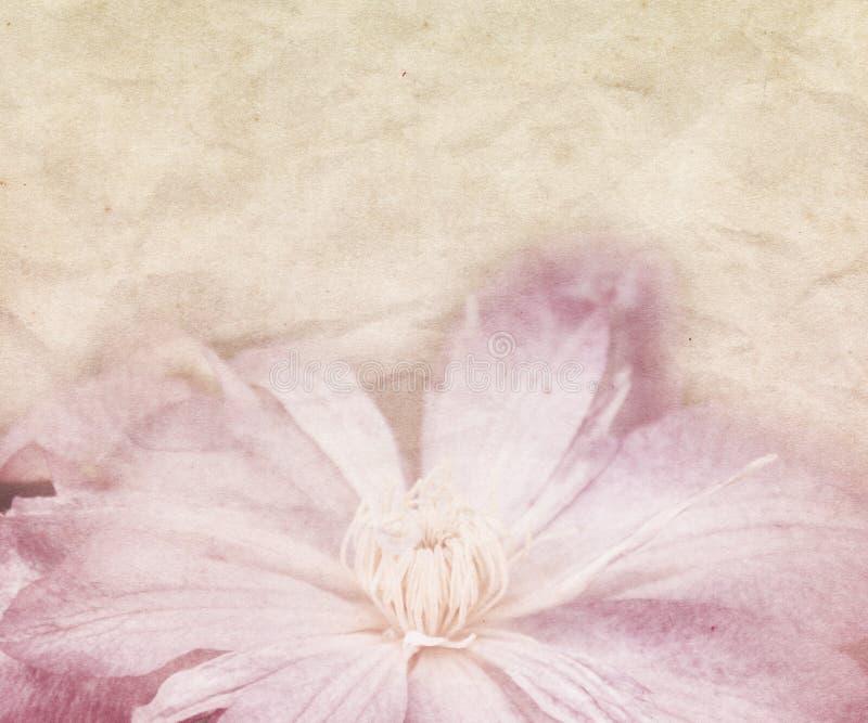 Fondo di nozze del fiore retro fotografia stock