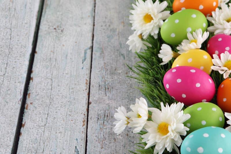 Fondo di Pasqua con erba fotografie stock libere da diritti