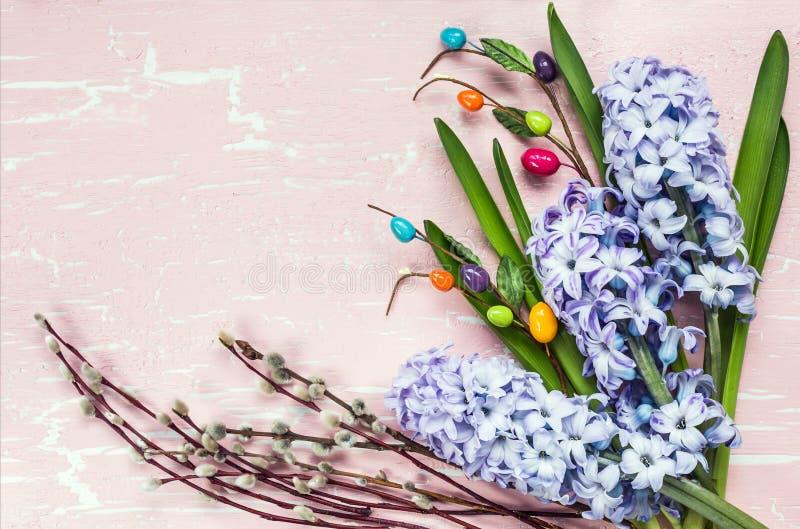 Fondo di Pasqua con i fiori ed il salice del giacinto vista superiore, fotografia stock