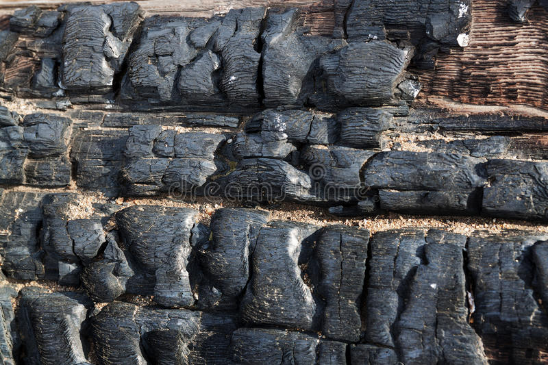 Fondo di struttura del carbone Struttura di legno bruciata fotografia stock