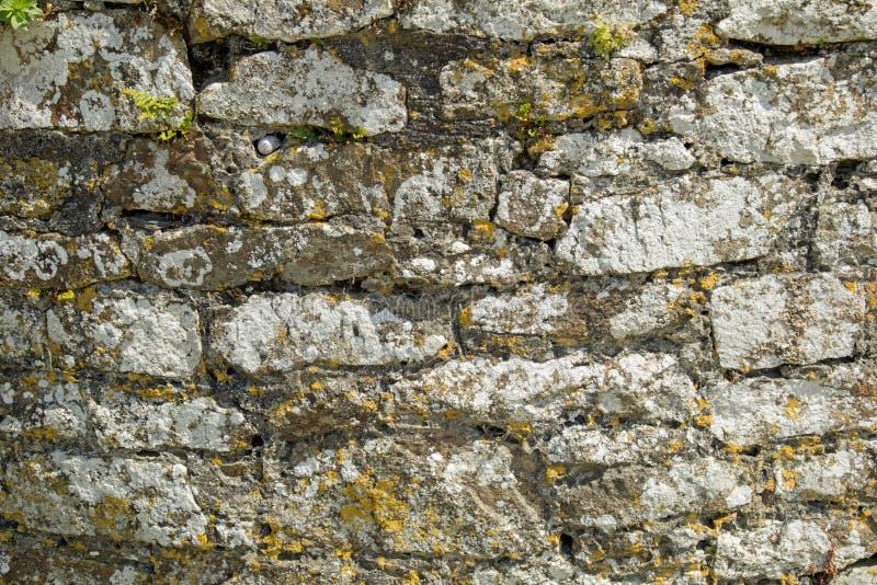 Fondo di struttura della parete di pietra immagini stock
