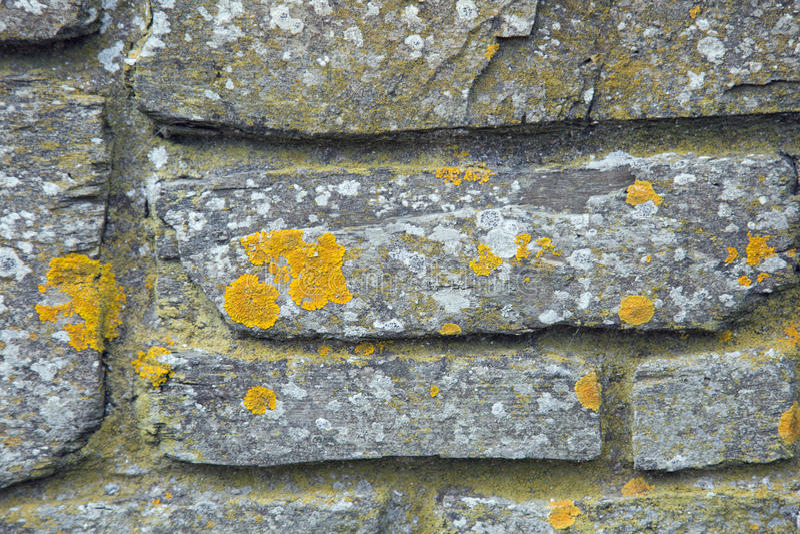 Fondo di struttura della parete di pietra fotografie stock libere da diritti