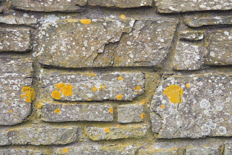 Fondo di struttura della parete di pietra immagine stock libera da diritti