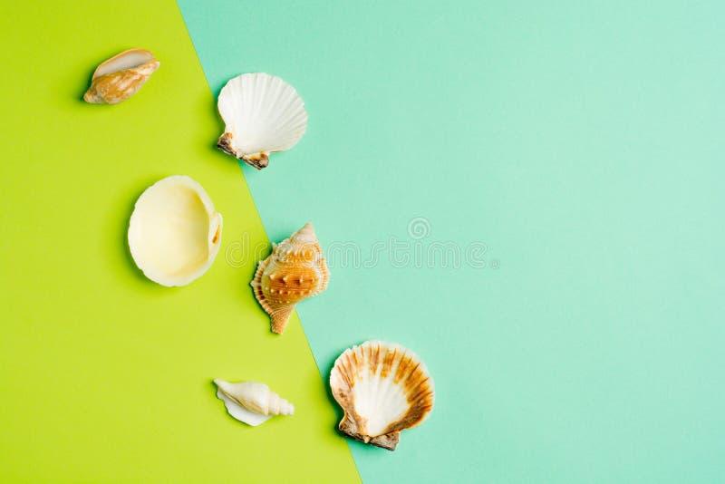 Fondo di vacanza estiva, conchiglie su turchese e fondo verde Ricordi del mare Concetto di estate Disposizione piana, cima fotografia stock