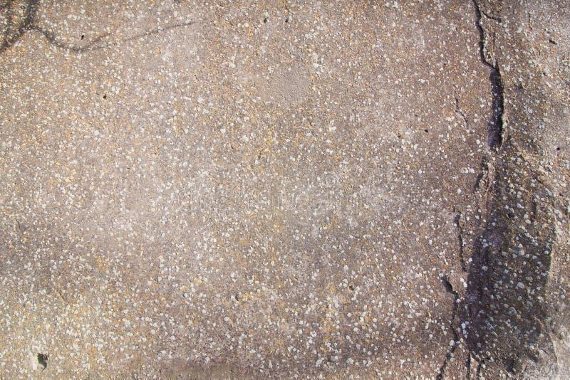 Fondo di vecchia parete incrinata misera concreta grigia, struttura di superficie astratta approssimativa orizzontale del primo p immagine stock libera da diritti